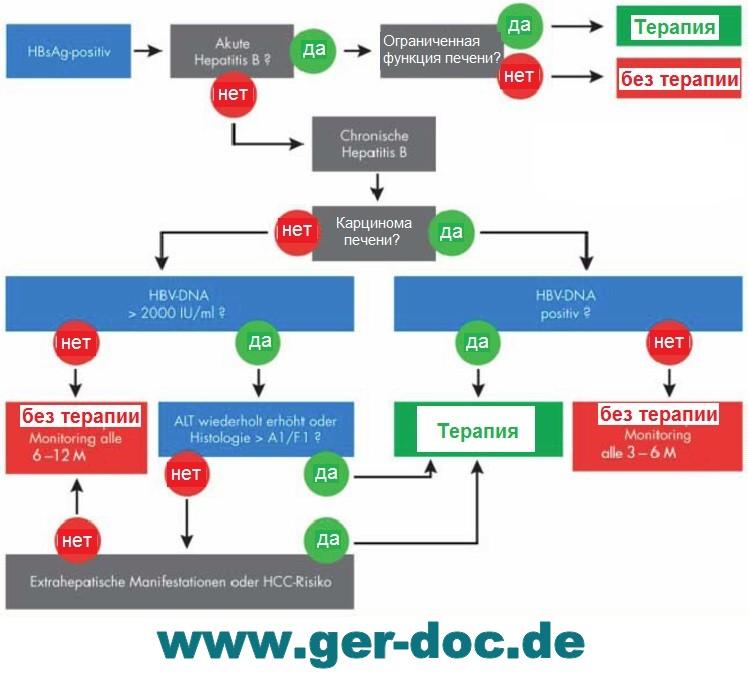 рекомендации лечения гепатита В в Германии