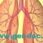 Диагностика и лечение бронхиальной астмы в Мюнхене.